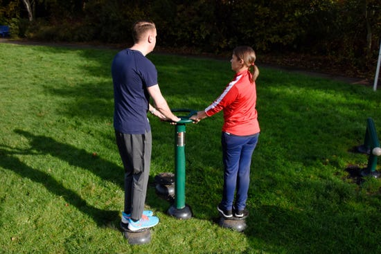 Waist Twister |outdoor waist twister |outdoor fitness equipment from sunshine gym